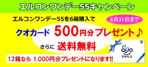 エルコンワンデー55を6箱購入でクオカード500円分プレゼント